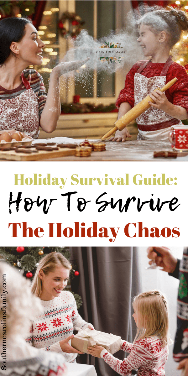 Holiday survival guide #christmasselfcare #theholidays #christmas #christmastips #holidaytips